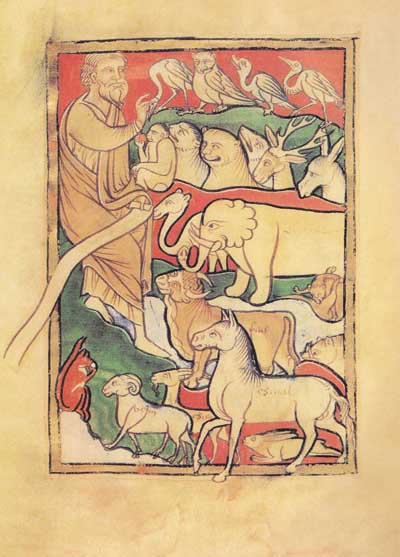 "Adam baptizes animals. The parchment from English ""Bestiary""."