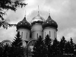 Domes with stars (Troitse-Sergiev)